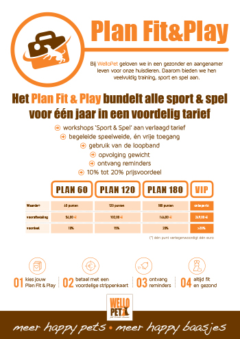 FIT&PLAY PLAN 350pix.jpg