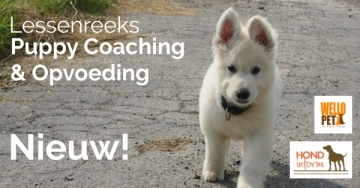 Puppy Coaching
