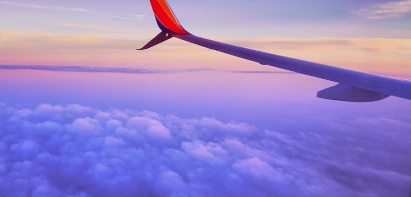 Reizen Met Het Vliegtuig Wellopet
