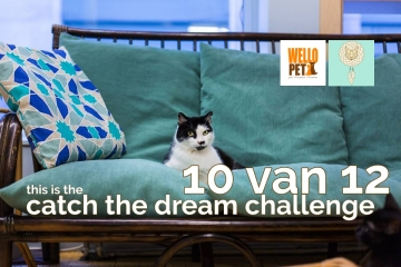 n°9 Catch The Dream Challenge