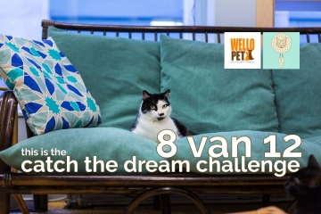 catch the dream challenge win een boek I Love Happy Cats