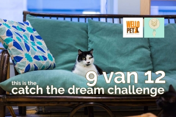 Catch The Dream Challenge n°9