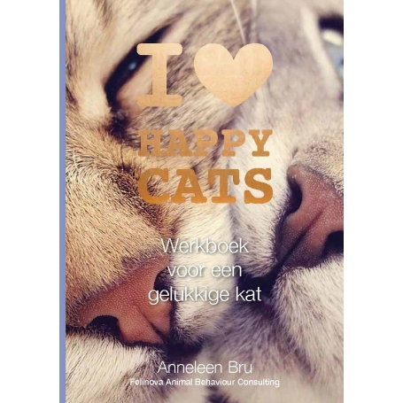 frontcover werkboek Happy cats