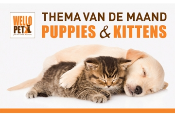 puppies en kittens themamaand